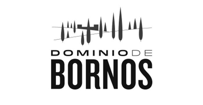 Artieda Distribuciones - Dominio de Bornos